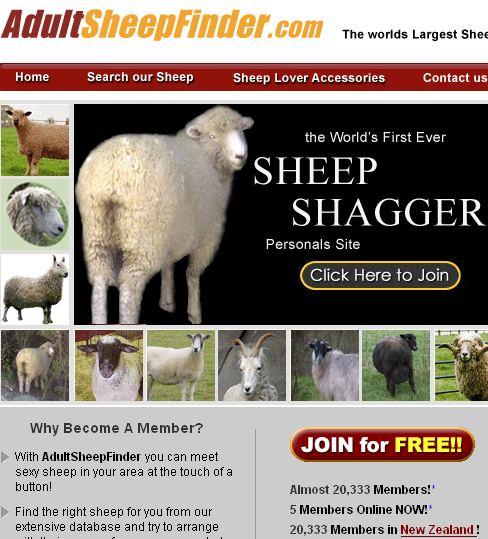 sheepfinder.jpg